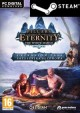 DIGITAL Pillars Of Eternity: The White March Expansion Pass (PC) PL (klucz STEAM)